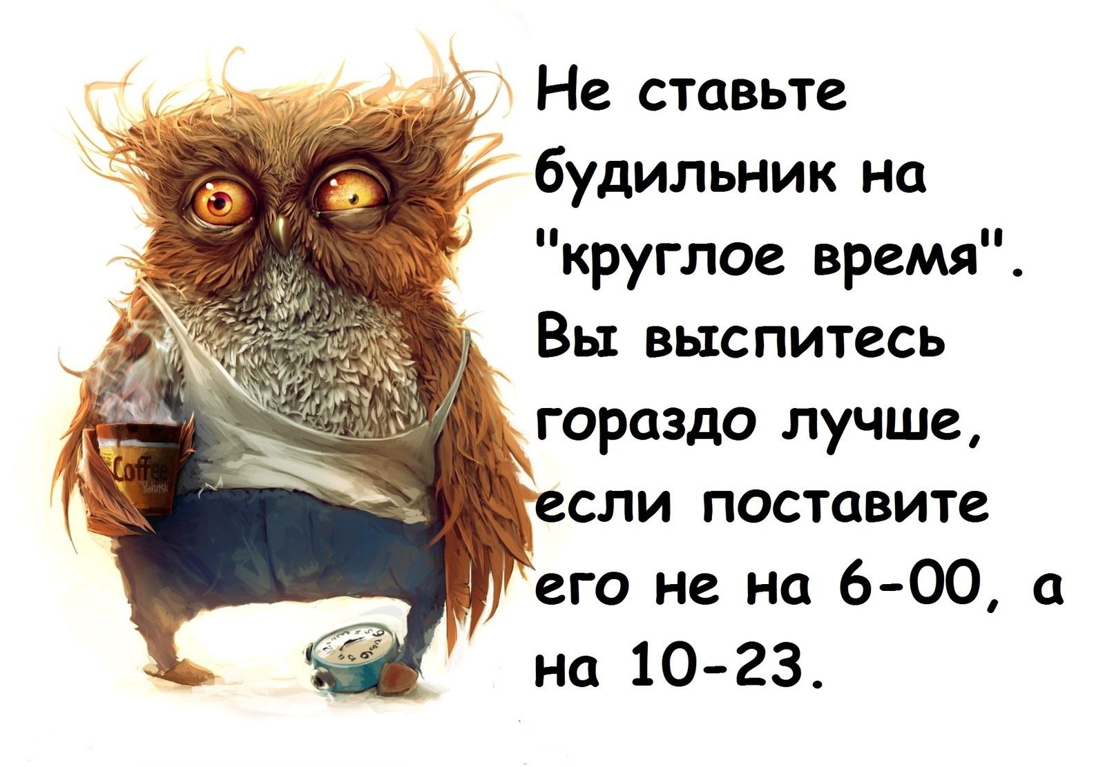 Как студенту просыпаться утром, если сова